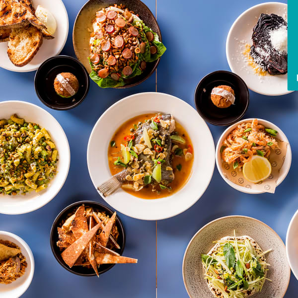 Four-Course Dinner with Wine in North Bondi