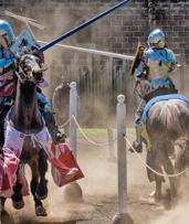 Kryal Castle Medieval Adventure Park Entry for Two Adults ($35) or Family of Six ($49), Leigh Creek (Up to $99 Value)