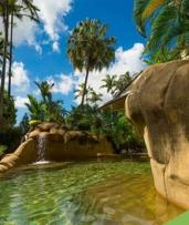 Cairns, QLD: 3- or 5-Night Getaway with Flights, Wine, and Breakfast at Cairns Colonial Club from Great Pacific Travels