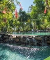 Port Douglas: From $789 Per Person for a 5-Night Eco-Retreat Escape with Flights and Tours at Thala Beach Nature Reserve