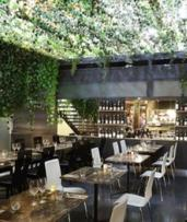 Tapas + Wine: 2 ($39) or 4 ($69), or 5-Course Dinner: 2 ($75) or 4 Ppl ($135) at Barrel Bar & Dining (Up to $244 Value)