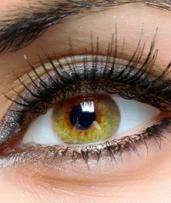 Full Set of Eyelash Extensions ($49) with Infill ($69) at Chapel's Beauty Salon (Up to $140 Value)
