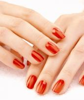 Shellac Manicure ($19), Shellac Pedicure ($25) or SNS Manicure and Shellac Pedicure ($45) at Amore Nails Beauty Salon