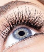 Eyebrow or Eyelash Makeover Package with Optional Tint at Uneek Nails and Waxing (Up to $156 Value)