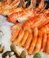 $74.90 for Friday or Saturday All-You-Can-Eat Seafood Buffet with Lobster at Baygarden Restaurant (Up to $99 Value)