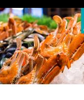 Award-Winning All-You-Can-Eat Seafood Table on Darling Harbour