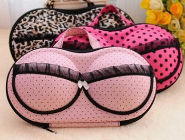 $12 for a Travel Bra Organiser