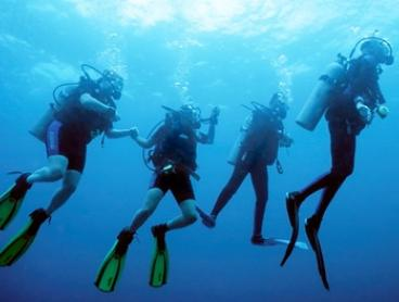 Open Water Beginners Scuba Dive Course for One ($199), Two ($379) or Four People ($749) with Scubology (Up to $3,096)
