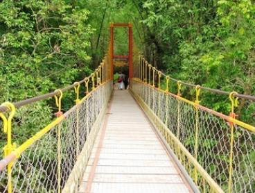 India: $565 for a Seven-Day Coorg, India Tour With Trekking Expedition with Bangalore Mountaineering Club