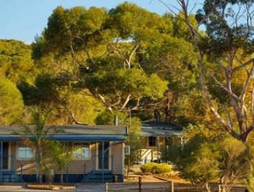 Barossa Valley: From $259 for a Spa Cabin Stay with Wine and Breakfast Hamper for Two People at Seppelts View Cabins
