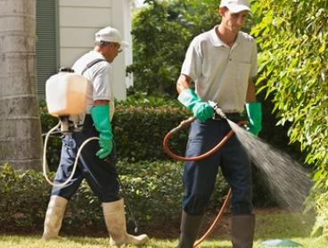 $69 for an Internal and External Pest Control Treatment with Brisbane Bond Cleaners, Metro Area ($149 Value)