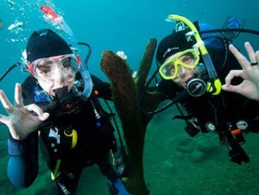 PADI Discover Scuba Diving Day Course for One ($179), Two ($357) or Four People ($699) at Dive Centre Bondi (Up to $900)