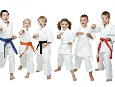 Karate Classes for One ($19), Two ($35) or Three Months ($55) at PDK Dojo Martial Arts School (Up to $360 Value)