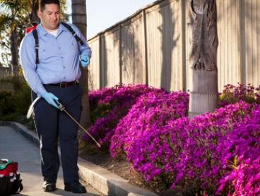 $69 for Internal and External Pest Control Treatment with Brisbane Quality Pest Control (Up to $150 Value)