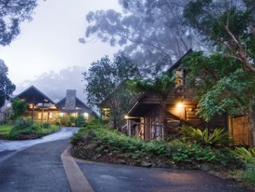 Gold Coast Hinterland: Up to 5-Night Escape for Two People with Breakfast and Late Check-Out at Binna Burra Lodge