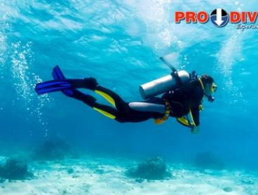 Open Water Dive Course on a Weekday ($149) or Weekend ($199) with Pro Dive, Three Locations (Up to $499 Value)