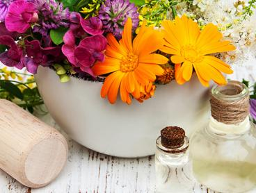 Online Naturopath Course Recognised By International Alliance of Holistic Therapies for $29 (Value $221.88)