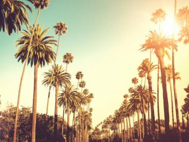 Direct Flights to Los Angeles from $898 Return on Virgin Australia. USA Summer. 2 or more Passengers