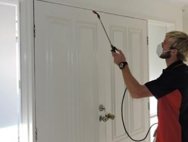 $59 Internal and External Pest Control by Boring Chores Brisbane, Gold Coast & Ipswich (From $220 Value)