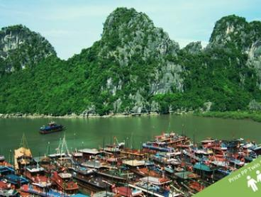 Vietnam: $469 Per Person for an Eight-Day North Vietnam Tour with Sightseeing and Guided Tours with Halong Tours Booking
