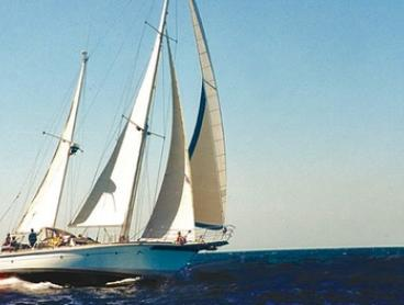 Rottnest Island Cruise + Lunch: 1 ($135), 2 ($269) or 4 People ($535) with Starsand Yacht Charters (Up to $1,096 Value)