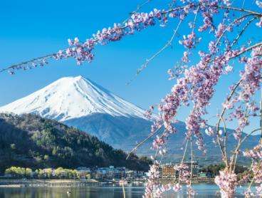 Full-service flights to Tokyo and Osaka from $562 return. All departure cities under $600!