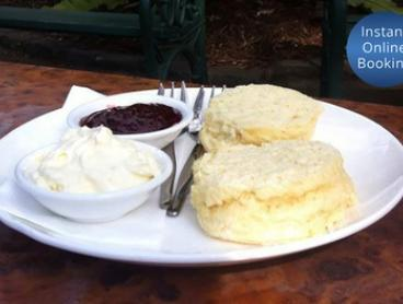 Devonshire Tea for Two ($11) or Four People ($22) at Geelong Botanical Gardens Tea House