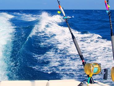 Half-Day Deep Sea Fishing Charter with Equipment Included: $140 for One Person, $260 for Two People, or $1,200 to Book the Whole Boat for 14 People!