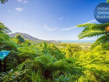 Port Douglas: Daintree Adventure Day Tour for One Person with Optional Jungle Surfing at Back Country Bliss