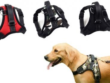 Adjustable Lightweight Dog Harness with a Leash in Choice of Colour: S ($15), M ($16), L ($18) or XL ($19)