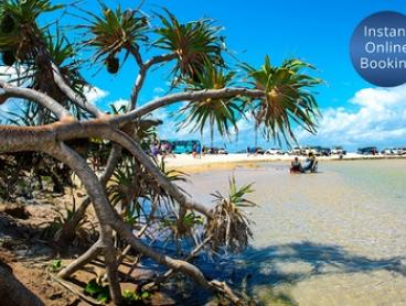 Fraser Island: Up to 5N Getaway for 2 or 4 People + 4WD Barge Transfers, Wine at Eurong Beach Resort