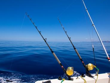 Catch a Six-Hour Deep Sea Fishing Experience and Save up to $61!
