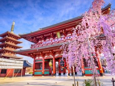 ✈ Japan: $2,599 Per Person for an 8-Day Tour with Breakfast, Bullet Train Ride, Guide, Entry Fees and Flights