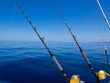 Catch a Six-Hour Deep Sea Fishing Experience in Rose Bay
