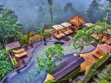 Secluded Jungle Luxury with Dining and Spa Inclusions, Daily Breakfast and Daily Yoga