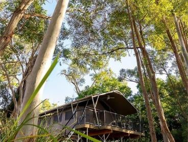 Queensland's First Vineyard Glamping Experience