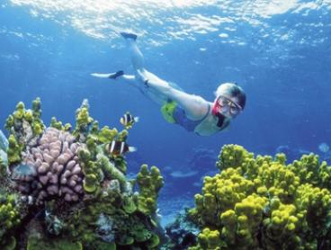 Bali: Blue Lagoon Snorkelling for Up to Five with Hotel Transfer, Lunch and Equipment from Bali Sun Tours
